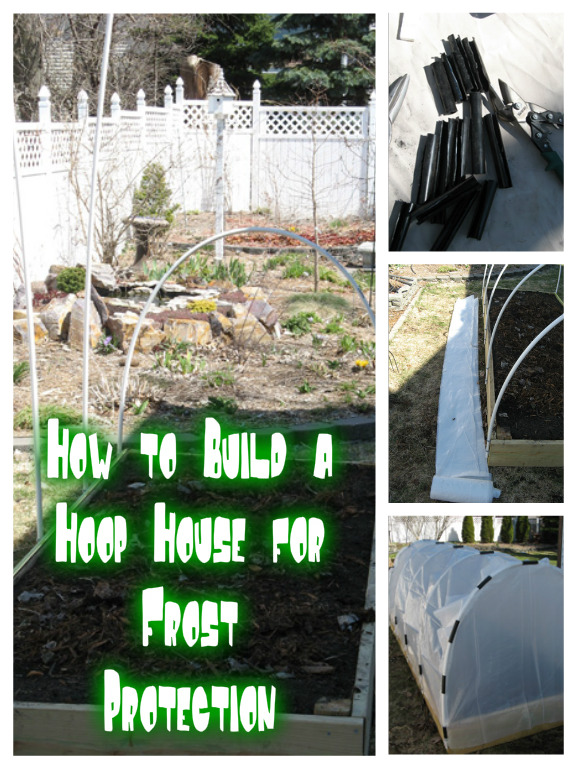 How to Build a Hoop House for Frost Protection