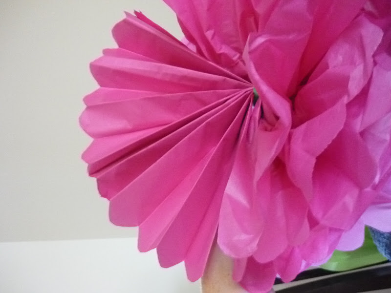 Tissue Paper Pom Pom's – Rainbow Party