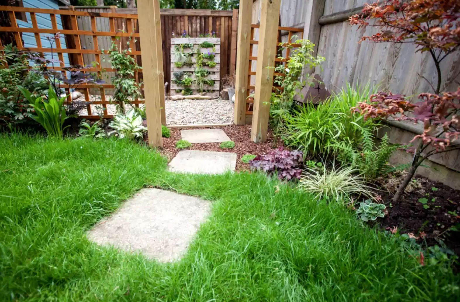 Lush Lawn -   Beautiful Low Maintenance Front Yard Garden and Landscaping Ideas
