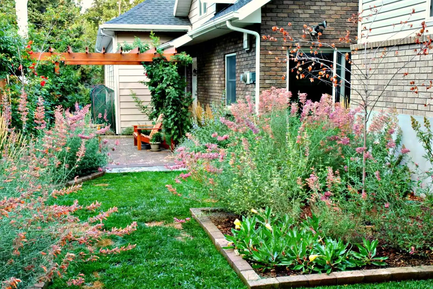 Small Urban Backyard -   Beautiful Low Maintenance Front Yard Garden and Landscaping Ideas