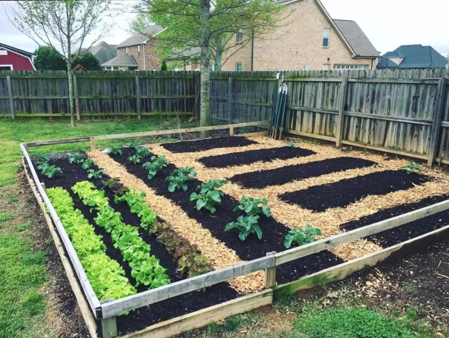 Backyard Vegetable Garden -   Beautiful Low Maintenance Front Yard Garden and Landscaping Ideas