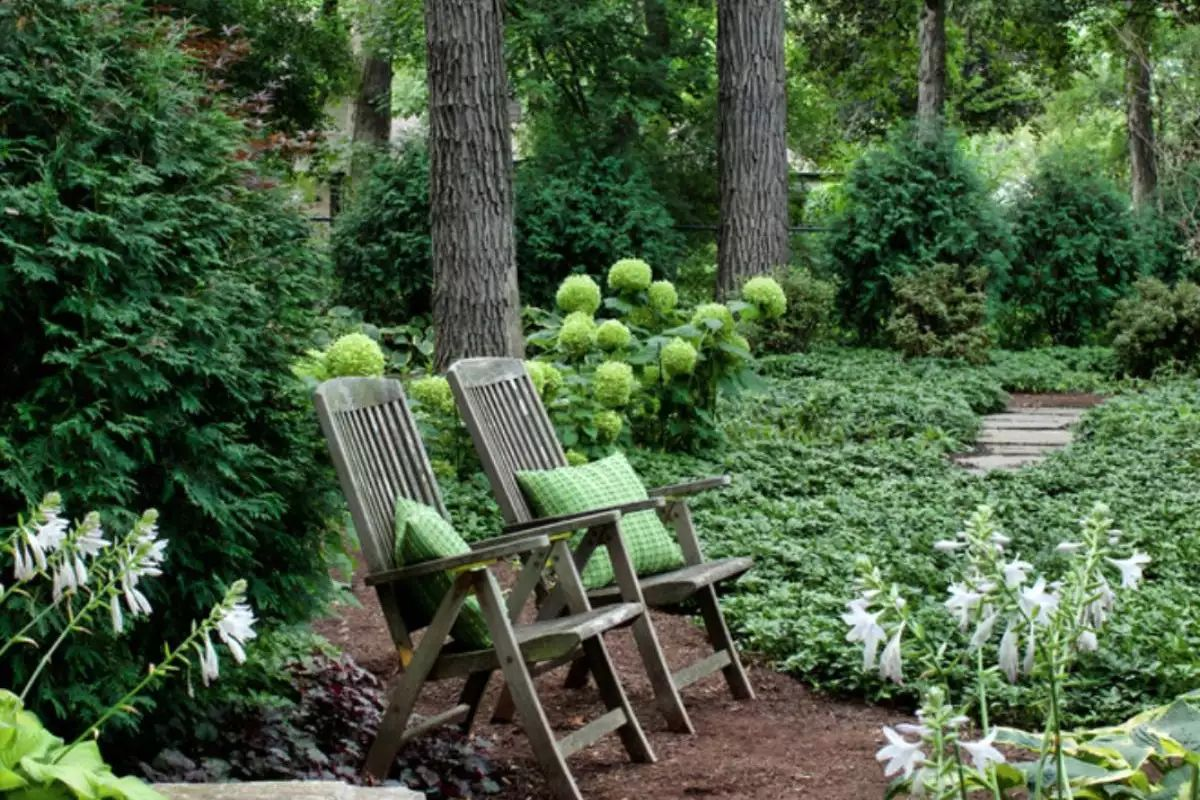Beautiful Low Maintenance Front Yard Garden and Landscaping Ideas